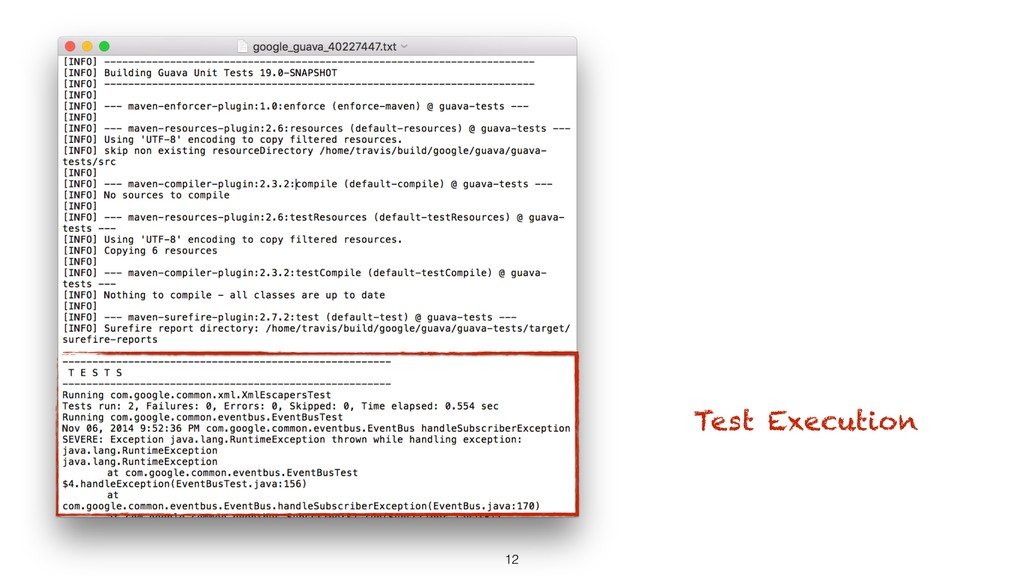 12 Test Execution