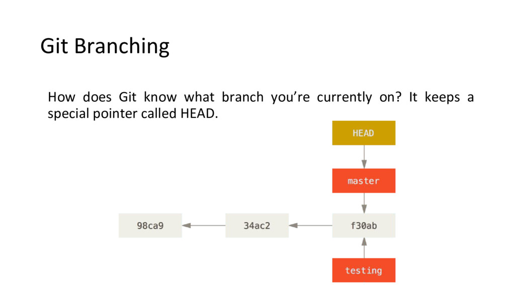 Git Branching How does Git know what branch you...