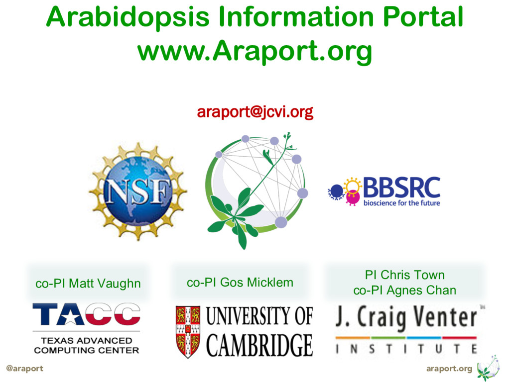 araport.org @araport Arabidopsis Information Po...