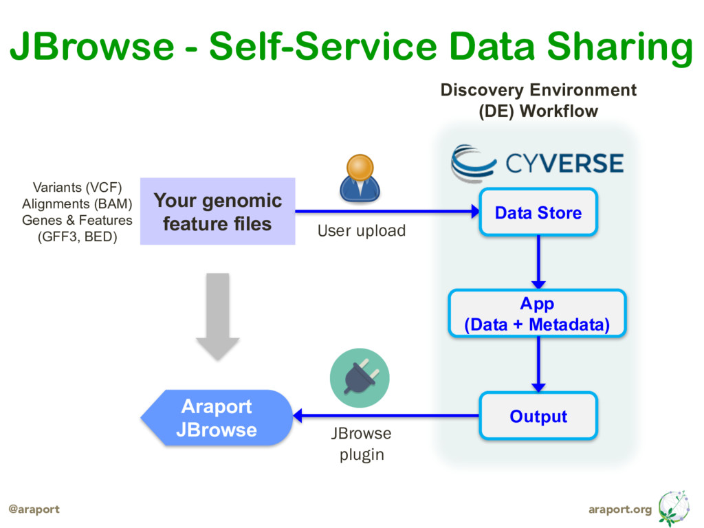 araport.org @araport JBrowse - Self-Service Dat...