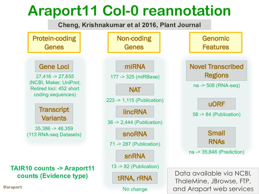 araport.org @araport Protein-coding Genes uORF ...