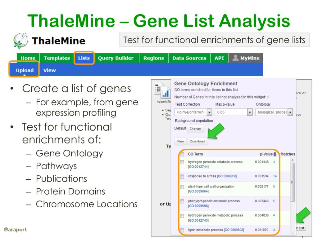 araport.org @araport ThaleMine – Gene List Anal...