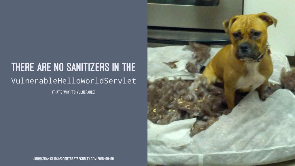 THERE ARE NO SANITIZERS IN THE VulnerableHelloW...