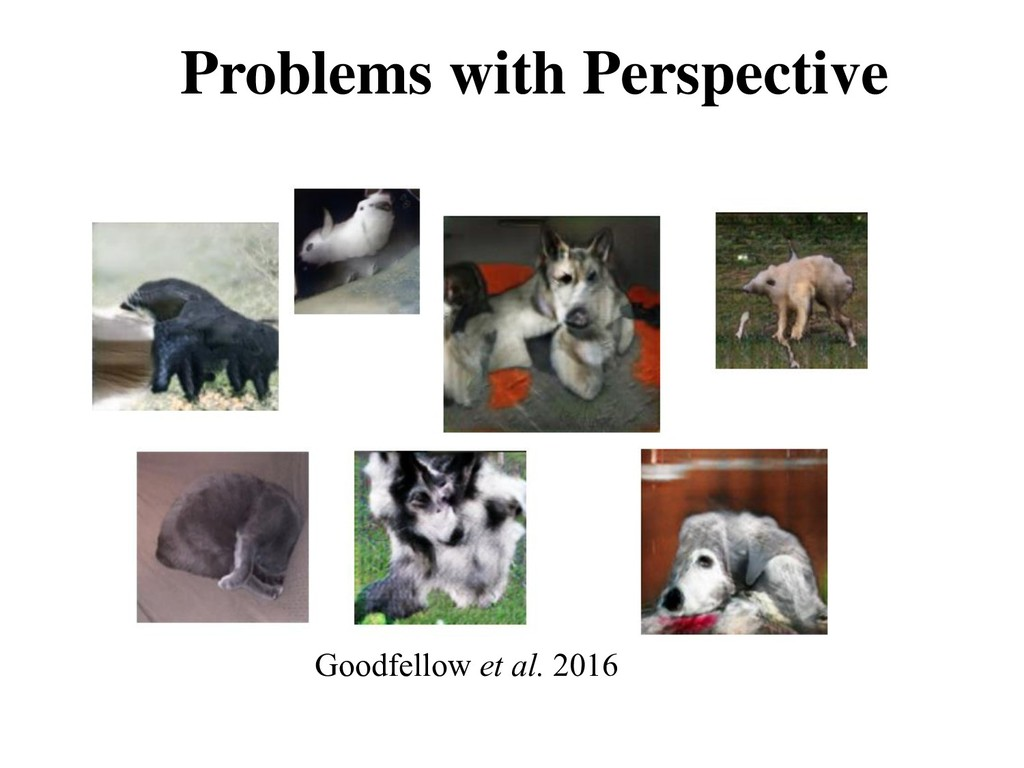 Problems with Perspective Goodfellow et al. 2016