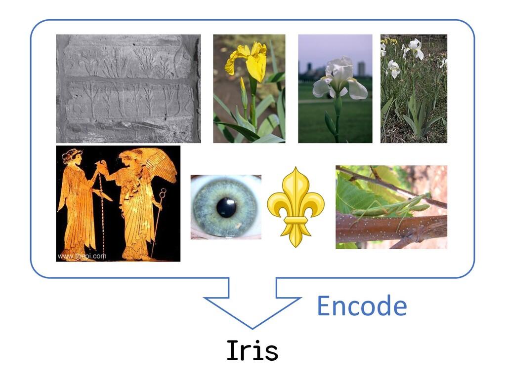 Iris Encode