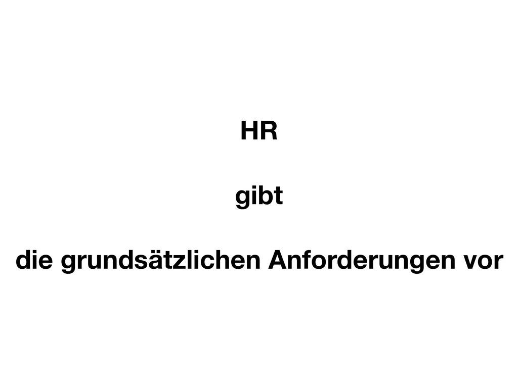 HR gibt die grundsätzlichen Anforderungen vor