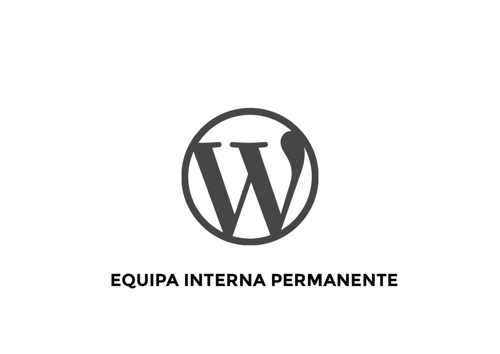 EQUIPA INTERNA PERMANENTE
