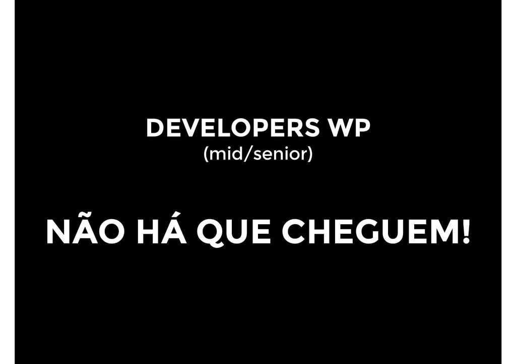 DEVELOPERS WP (mid/senior) NÃO HÁ QUE CHEGUEM!