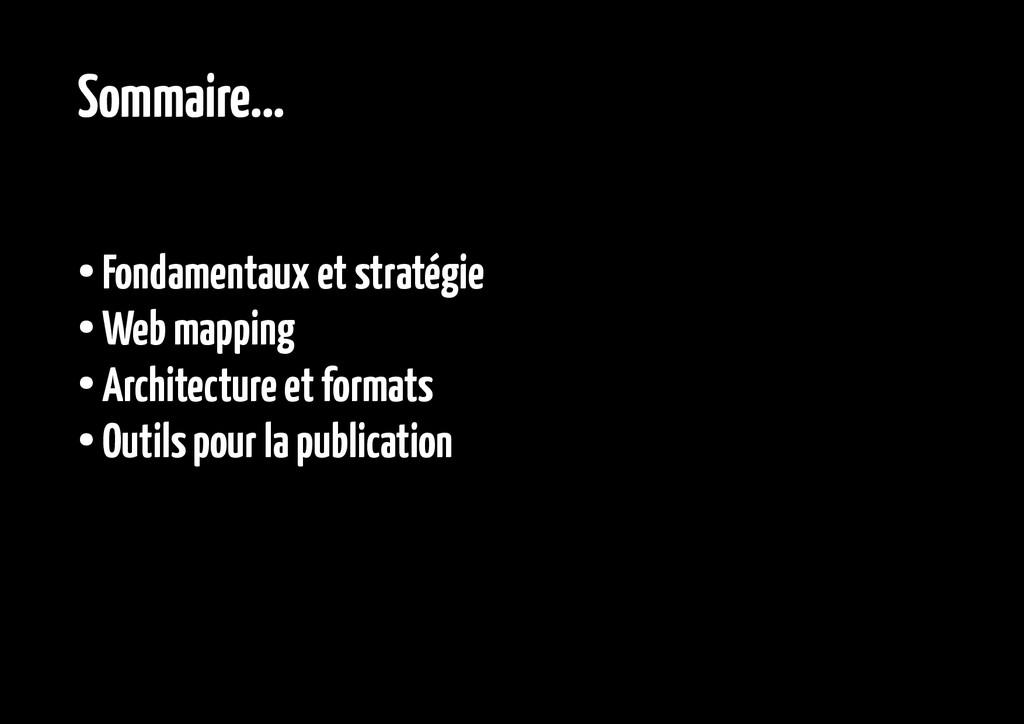 Sommaire... ● Fondamentaux et stratégie ● Web m...