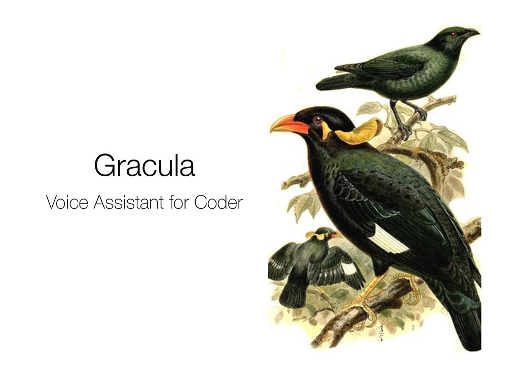 Gracula Voice Assistant for Coder