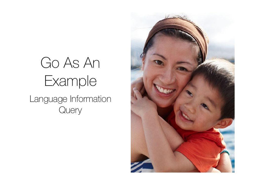 Go As An Example Language Information Query