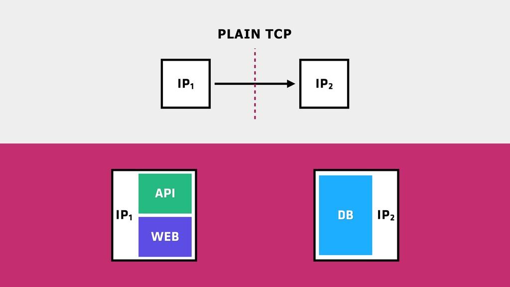 IP2 IP1 IP1 IP2 PLAIN TCP WEB DB API