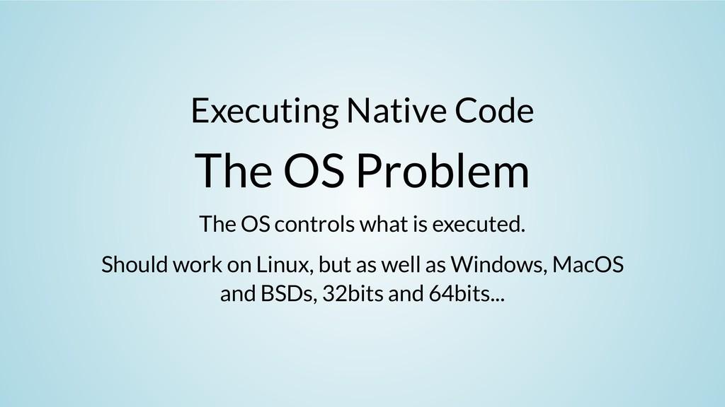 Executing Native Code The OS Problem The OS con...