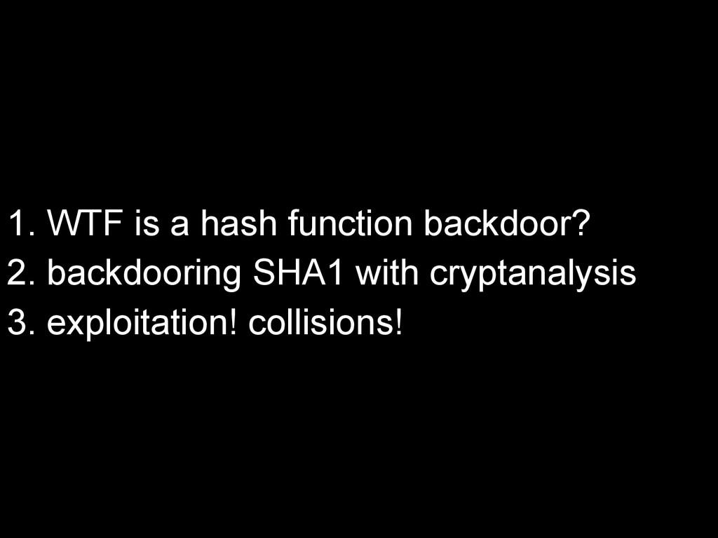 1. WTF is a hash function backdoor? 2. backdoor...