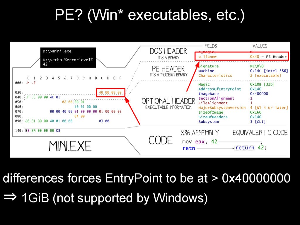 PE? (Win* executables, etc.) differences forces...