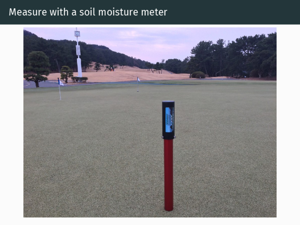 Measure with a soil moisture meter
