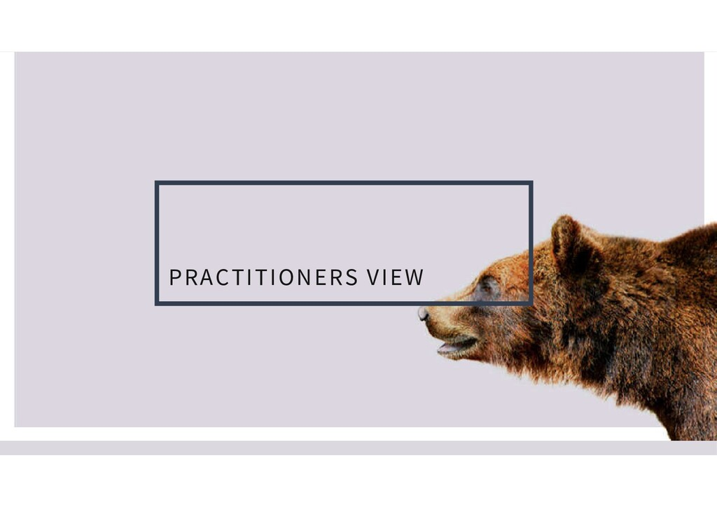 PRACTITIONERS VIEW