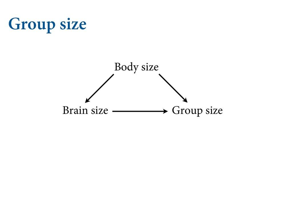 Group size Group size Brain size Body size
