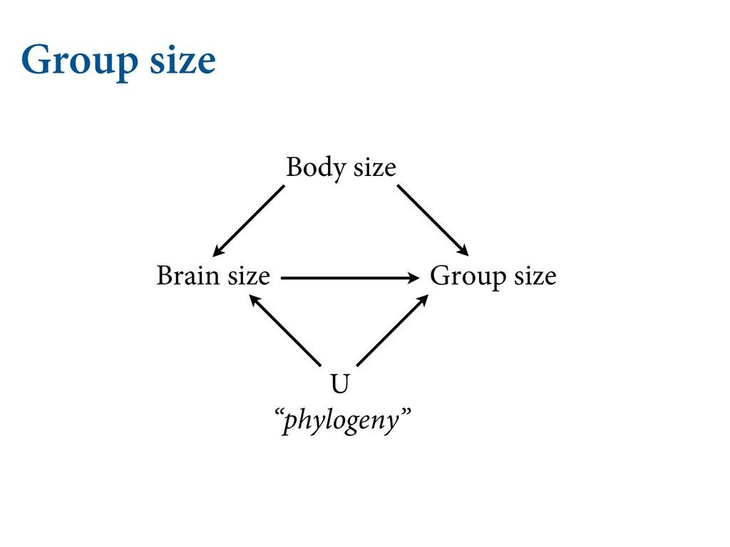 "Group size Group size Brain size Body size U ""p..."