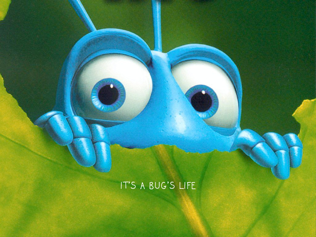 IT'S A BUG'S LIFE