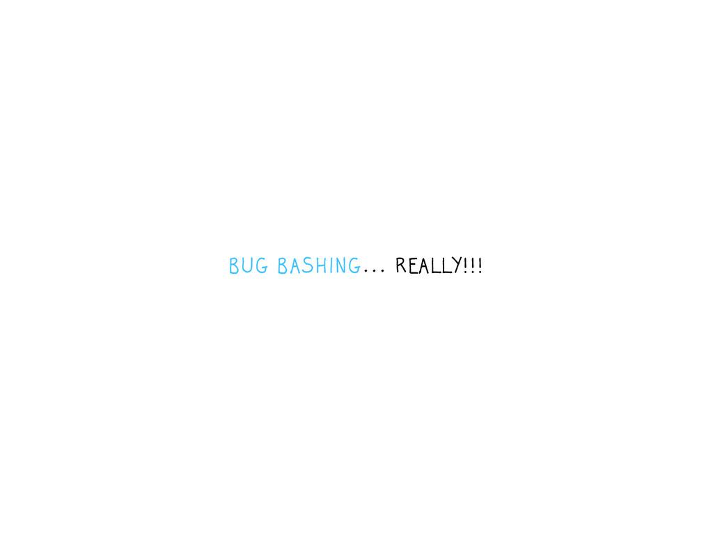 BUG BASHING... REALLY!!!