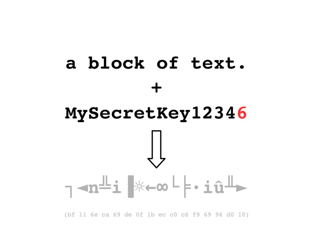 a block of text. + MySecretKey12346 ┐◄n i ∙iû ╩...
