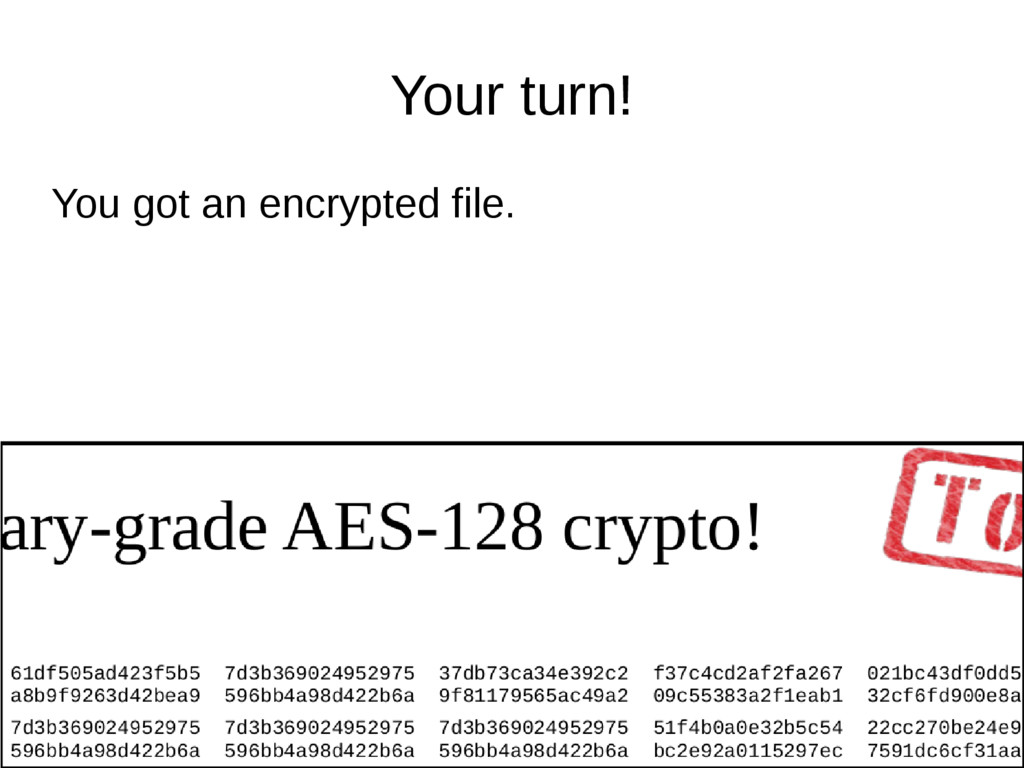 Your turn! You got an encrypted file.