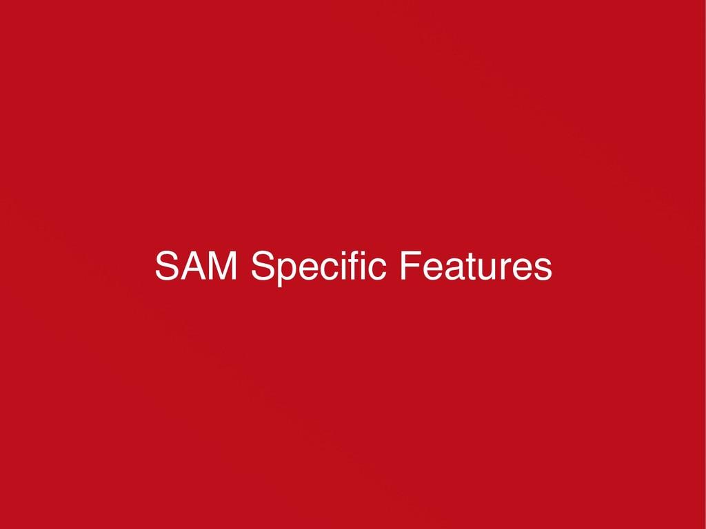 SAM Specific Features