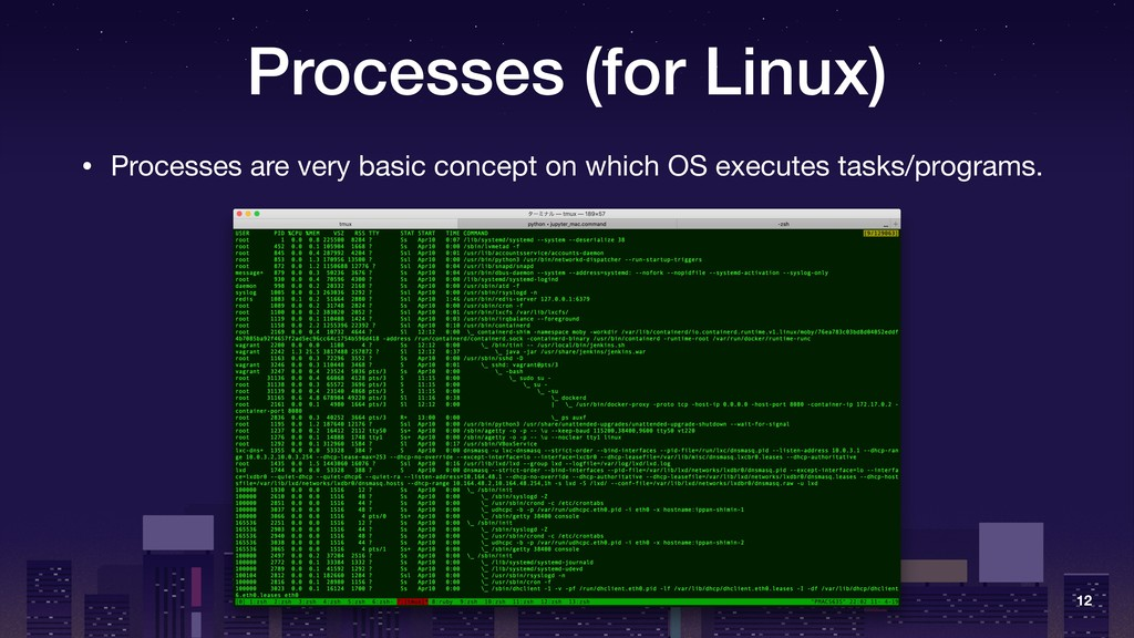 Processes (for Linux) • Processes are very basi...