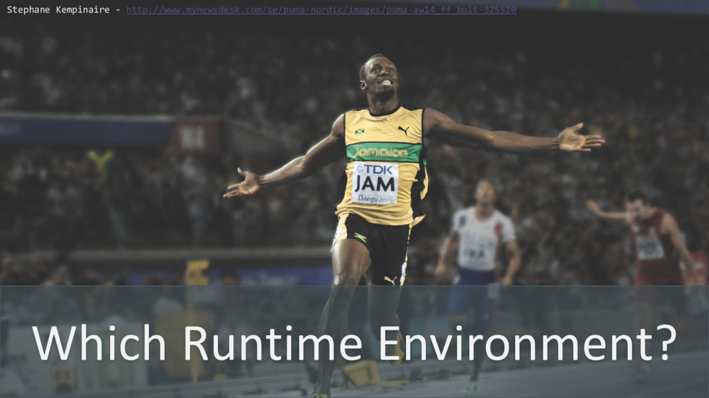 Which Runtime Environment? Stephane Kempinaire ...