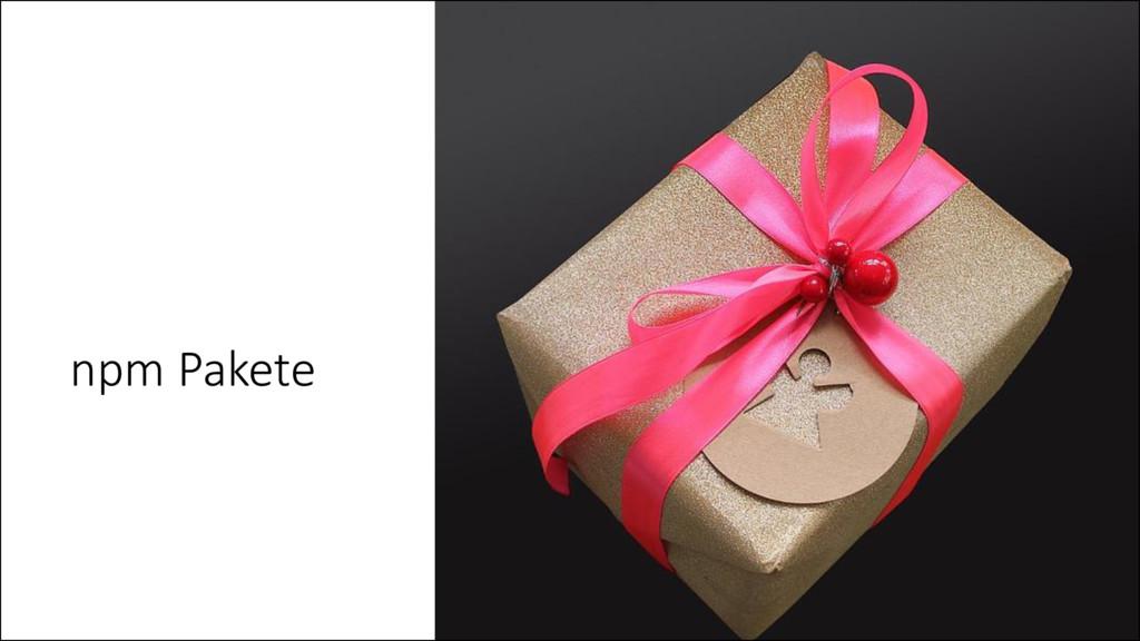 npm Pakete