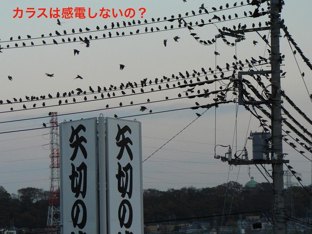 2020/01/15 ͓ՈϋοΫ IoTLTಛผฤ ؆୯ʹࢮͳͳ͍ 10 Χϥεײి͠ͳ͍...