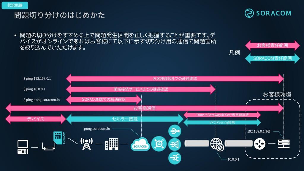 問題切り分けのはじめかた 状況把握 お客様環境 セルラー接続 Transit Gateway/...