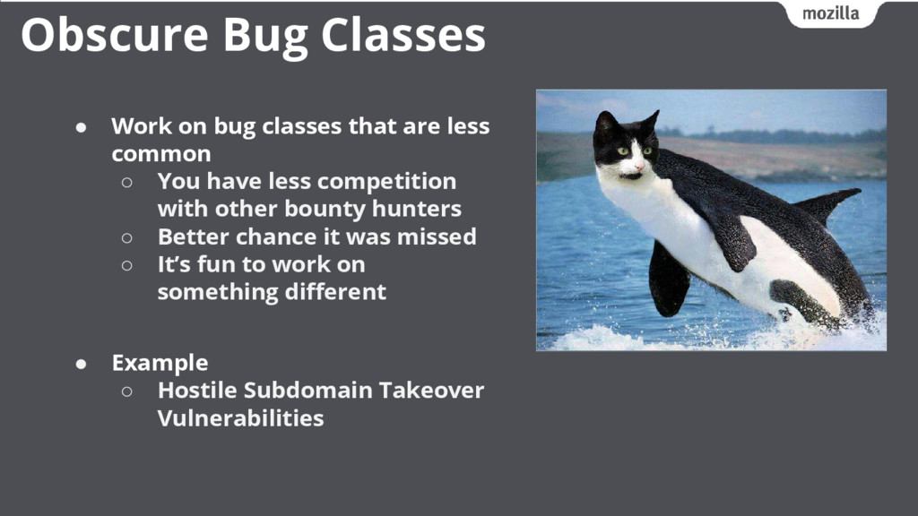 ● Work on bug classes that are less common ○ Yo...