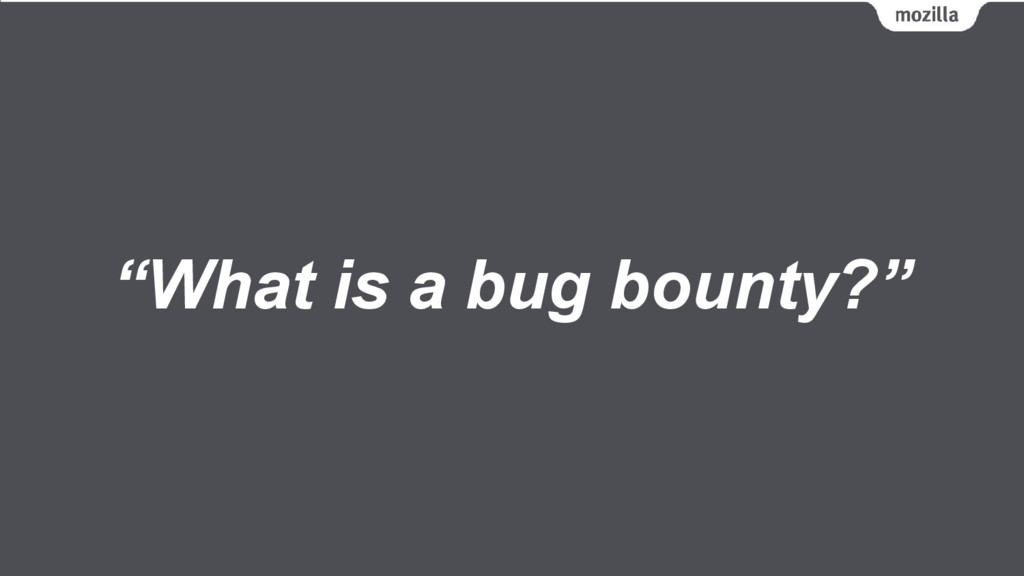 """What is a bug bounty?"""