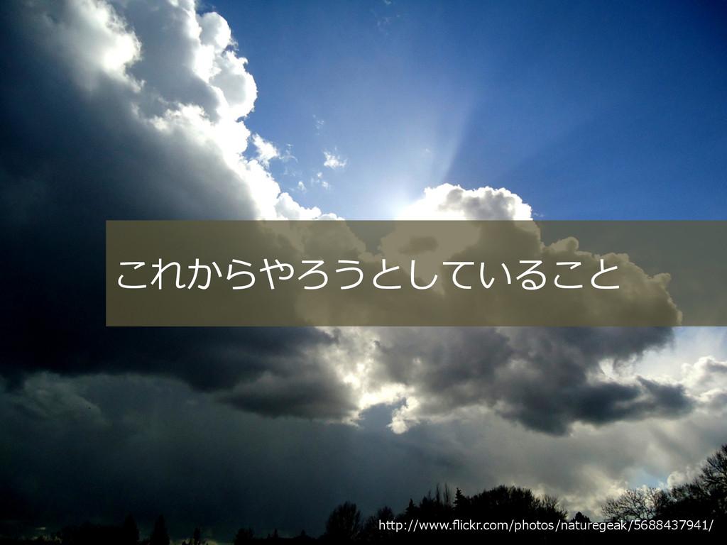 http://www.flickr.com/photos/naturegeak/56884379...