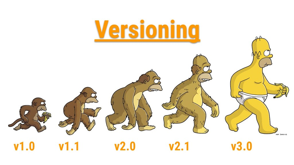 v1.0 v1.1 v2.0 v2.1 v3.0 Versioning