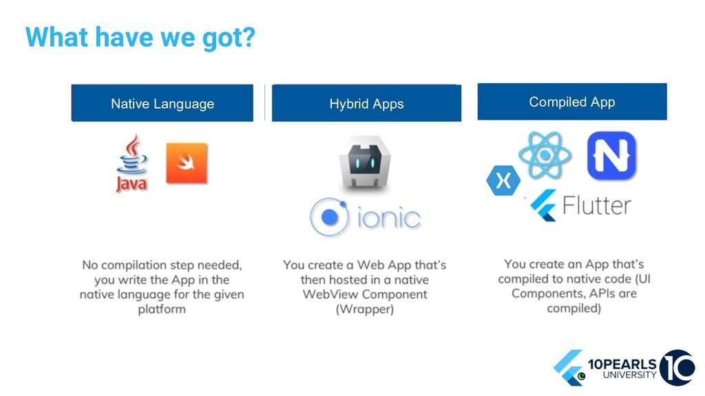 What have we got? Native Language Hybrid Apps C...
