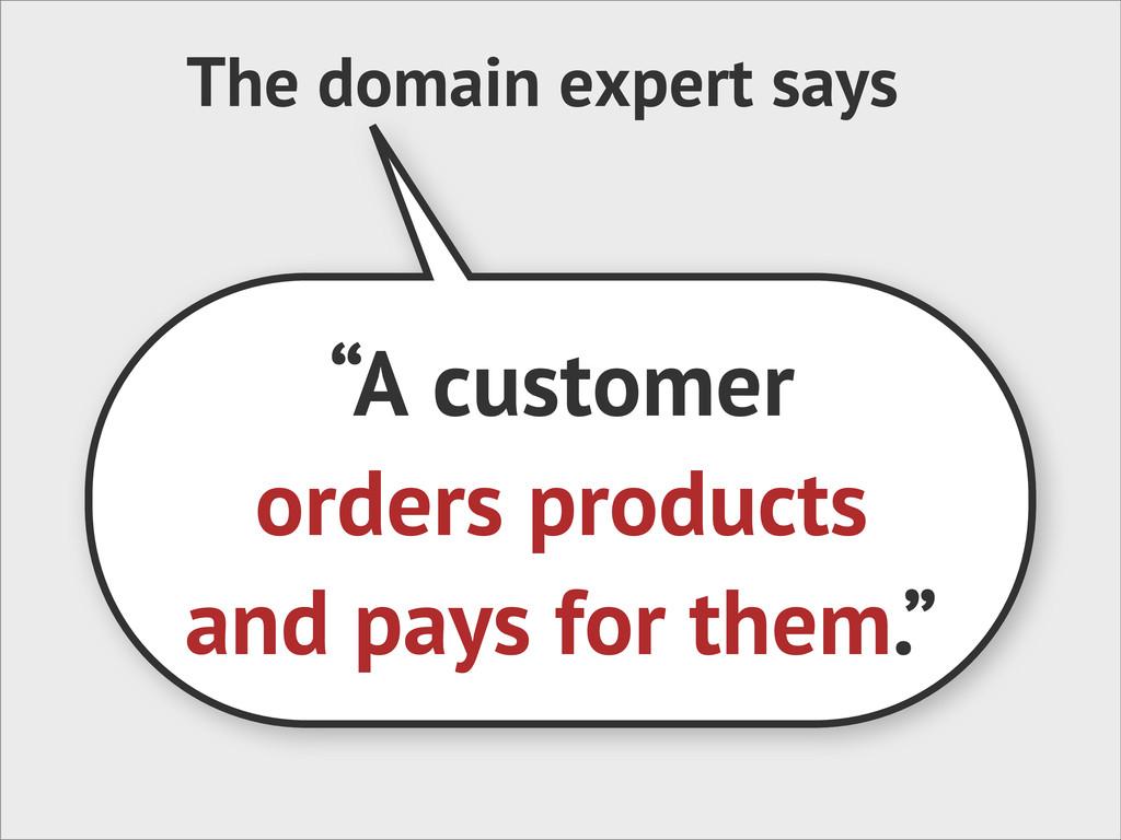 "The domain expert says ""A customer orders produ..."