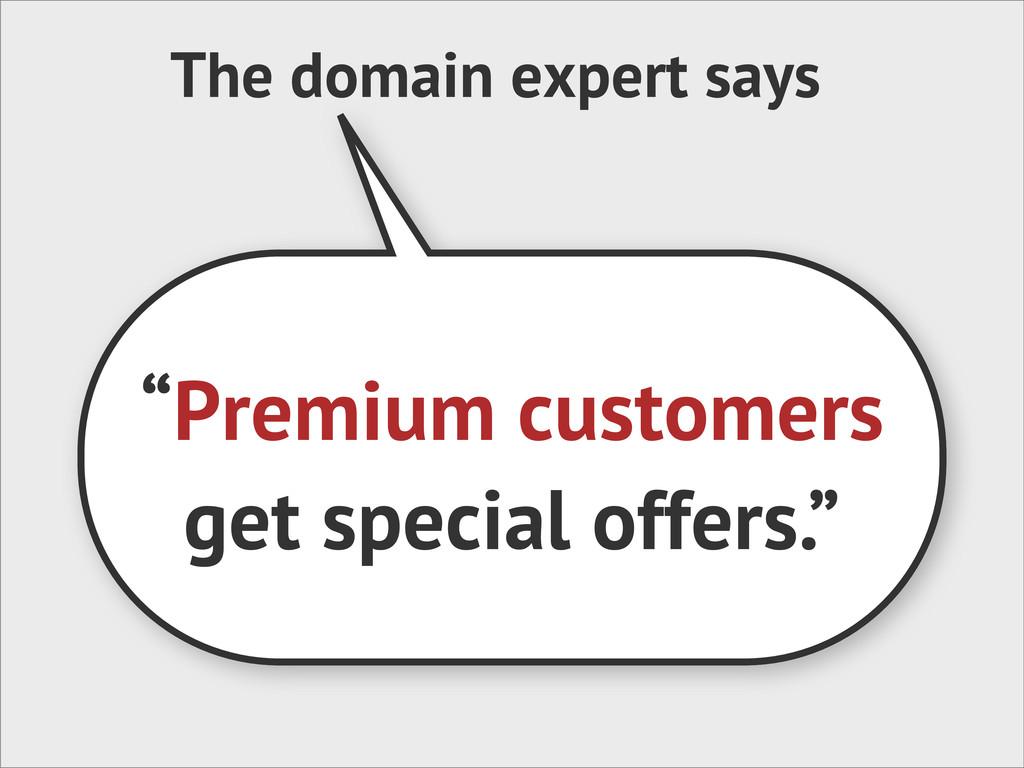 "The domain expert says ""Premium customers get s..."