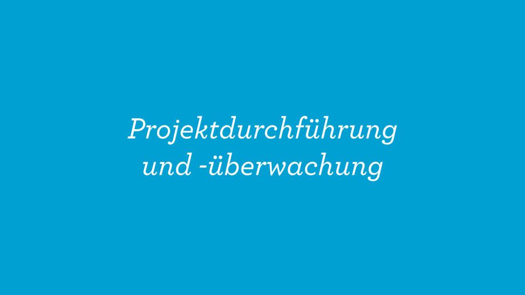 Projektdurchführung und -überwachung