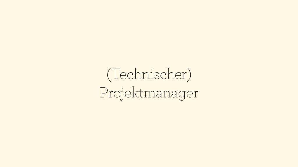 (Technischer) Projektmanager
