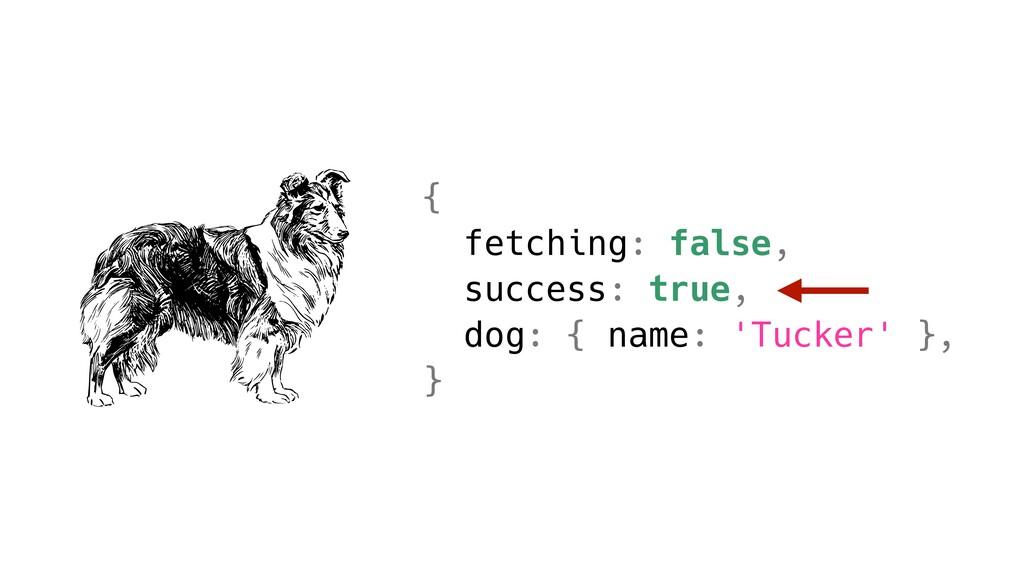 { fetching: false, success: true, dog: { name: ...