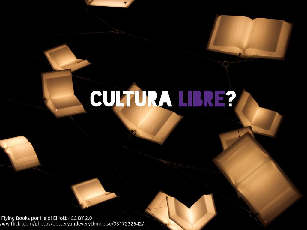 Cultura Libre? : Flying Books por Heidi Elliott...