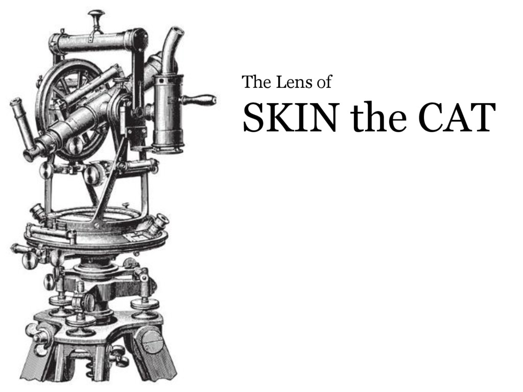 © Microsoft Corporation The Lens of SKIN the CAT