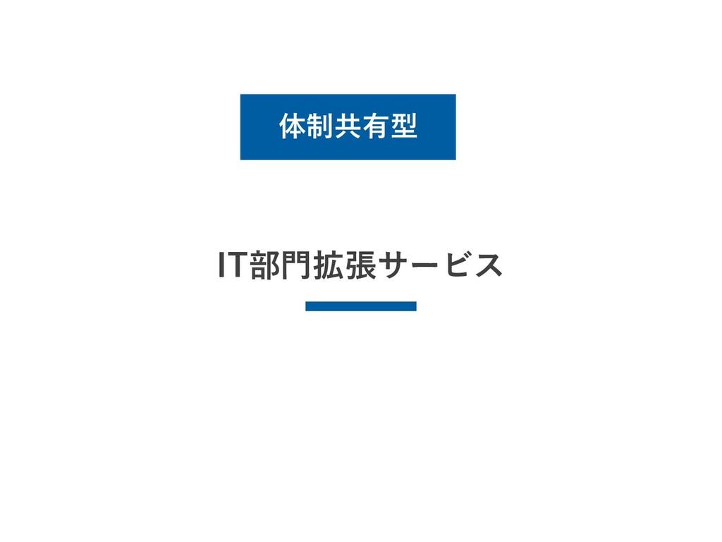 IT部門拡張サービス 体制共有型