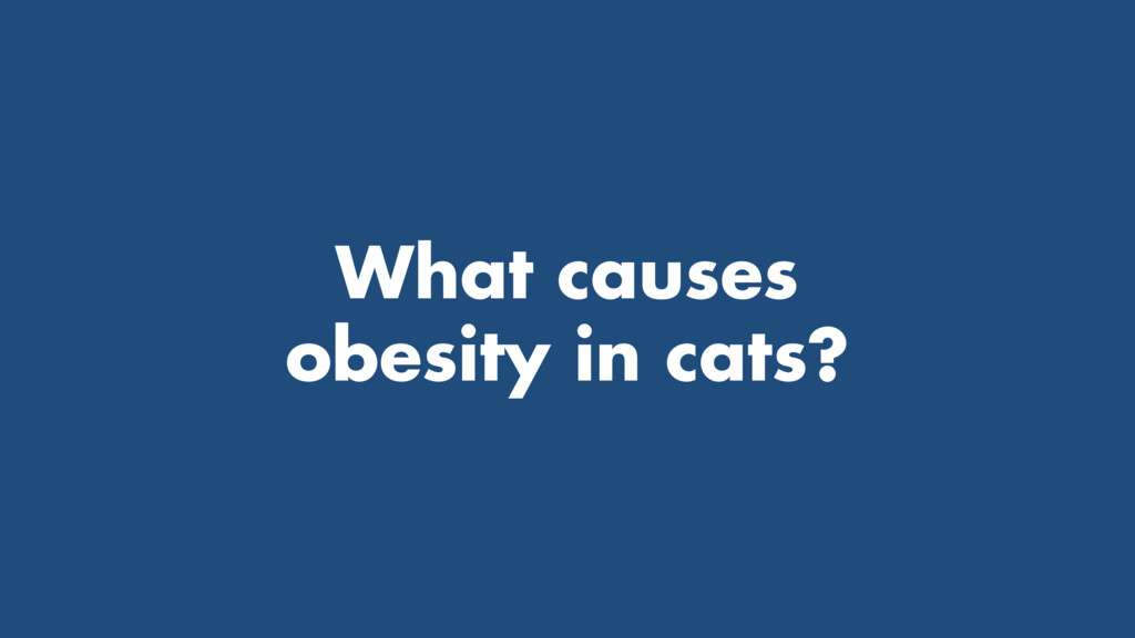 What causes obesity in cats?