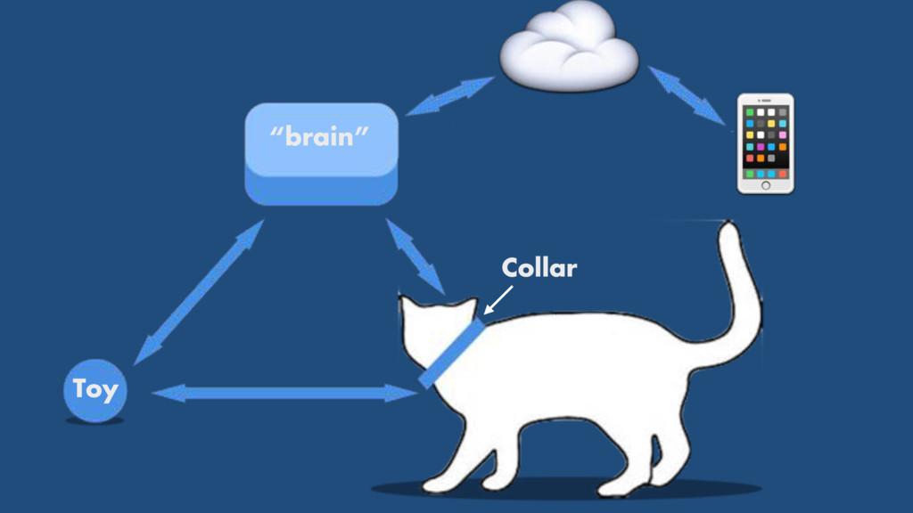 """brain"" Toy Collar # ☁"