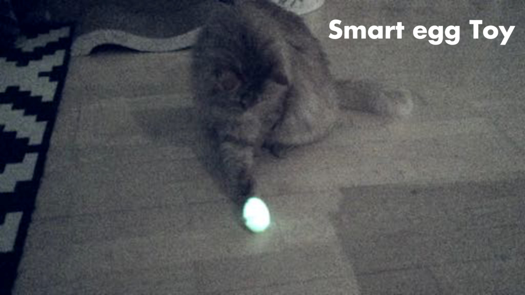 Smart egg Toy