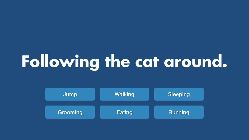 Following the cat around. Jump Walking Sleeping...